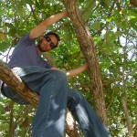 mike in a tree