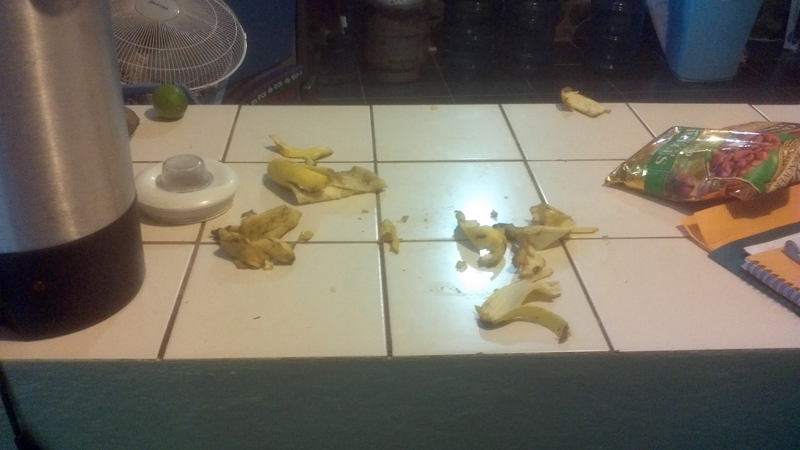 someone ate all of the bananas...